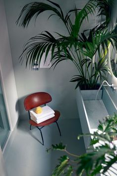 Casa Flora by Design-Apart | Hotel interiors
