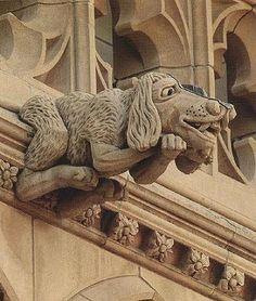 Dog gargoyle at the National Cathedral, WA DC
