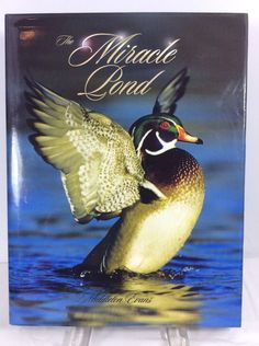 Publisher: Ravenwood Press. A great coffee table reference book titled The Miracle Pond by Middleton Evans. It is a hardcover.Book is very clean. Dust jacket shows some minor scuffing. Boards are stiff. | eBay!