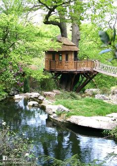 This is Cliffside Lodge treehouse built by Blue Forest [www.blueforest.com]. The treehouse sits in a very English garden near Bristol sensitively hugging an oak without anchors in the tree.