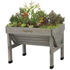 VegTrug Small Classic Raised Planter - Grey Wash | Robert Dyas Organic Gardening, Plants, Garden, Elevated Gardening, Food Garden, Vertical Garden, Vegetable Garden Beds, Container Gardening, Garden Supplies