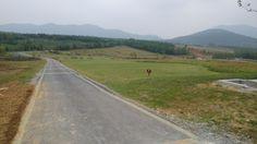 安徽 巢湖 Anhui Chaohu
