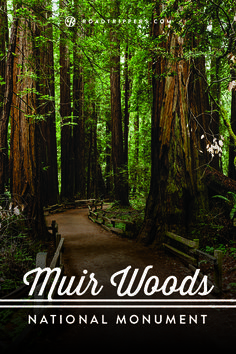 """Trees that are at least 1200 years old with heights up to 379 feet - Muir Woods, San Francisco. Often overlooked, America's national monuments are sometimes referred to as the """"middle child"""" of the national parks system. Dream Vacations, Vacation Spots, Vacation Ideas, Places To Travel, Places To See, Travel Destinations, Muir Woods National Monument, Road Trip Planner, San Francisco Travel"""