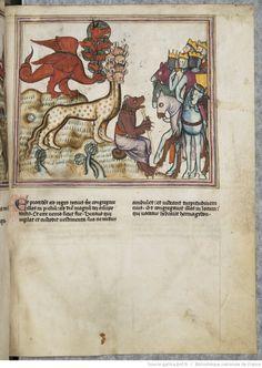 vue 65 - folio 61