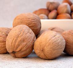 Willis Orchard Company | Walnut Trees