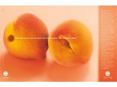 Ghirotti & Cia Publicidade | Hospital Israelita Albert Einstein –