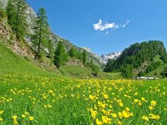 Alpe Devero Italy
