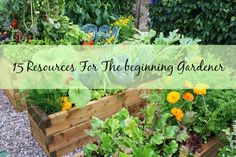 15 Források a kezdő kertész