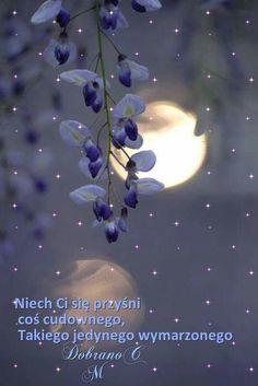 Good Night, Pray, Movie Posters, Polish Sayings, People, Nighty Night, Film Poster, Good Night Wishes, Billboard