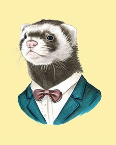 A group of ferrets is called a business. Therefore if I owned 4 ferrets, I'd own a small business. My ferrets would then have to wear suits, or else it would just be strange...