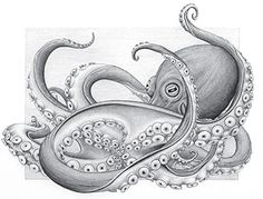 Kelsey is also an accomplished artist, as evidenced by this pencil drawing of an…