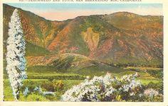 Arrowhead, San Bernardino Mountains
