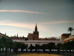 Desde el Real Alcázar de Sevilla