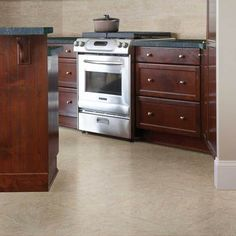 Check out this American Olean product: Photo features Salcedo™ in Pueblo Clay. Bathroom Flooring, Tile Flooring, Kitchen Flooring Options, Wood Blinds, Floor Design, Porcelain Tile, Kitchen Appliances, Kitchens, Living Room Designs