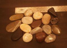Fine Polished Australian Beach Stones in Five by AllAussieOpals Australian Beach, Beach Stones, Polish, Vitreous Enamel, Nail Polish, Gel Polish