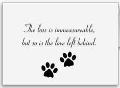Customisable dog sympathy gifts - t-shirts, posters, mugs, accessories and more from Zazzle. Choose your favourite dog sympathy gift from thousands of available products. Losing A Dog Quotes, Dog Loss Quotes, Pet Quotes Dog, Animal Quotes, Losing A Pet, Dog Death Quotes, Dog Quotes Love, Quotes About Dogs, Pet Loss Poems