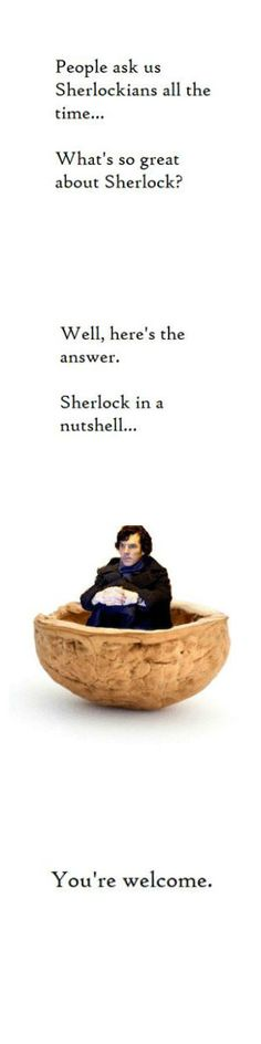 SHERLOCK IN A NUTSHELL I AM LAUGHING SO HARD BECAUSE THIS IS THE FANDOM<-------- haha no that is the tame side of the fandom and I mean the very tame side of the fandom.