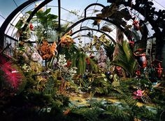 """Lori Nix - """"Botanic Garden"""". I find it amazing that all of these photos are actually photographed as miniatures and not full-scale"""