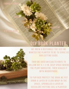 book planter! centerpiece? Maybe the centerpiece of a patio table? ... could always put parsley in it and then use the parsley for my food...