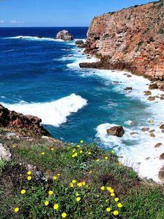 Parque Natural do Sudoeste Alentejano e Costa Vicentina - Algarve (Publiekstrekkers) - Portugal - Droomplekken