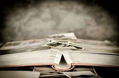 Je toekomst is geworteld in het verleden. Door je levensloopverhaal te schrijven krijg je nieuwe waardevolle inzichten over jouw loopbaan.