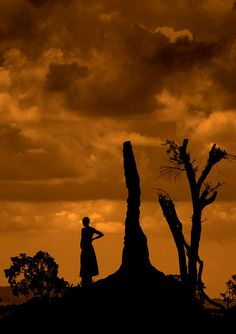 Termite Mound,  Ethiopia. Africa.