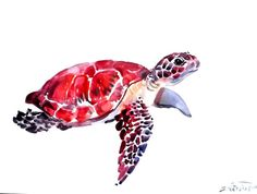 Sea Turtle original watercolor painting 9 X 12 in by ORIGINALONLY, $27.00