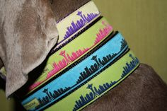 Seattle Skyline collar!