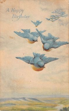 vintage 1919 Birthday Postcard of Pretty Flying Bluebirds by Gibson Art Company Birthday Postcards, Vintage Birthday Cards, Vintage Greeting Cards, Vintage Ephemera, Vintage Paper, Vintage Art, Bluebird Vintage, Vintage Birds, Old Cards