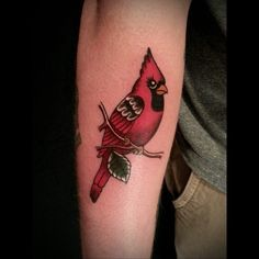 Traditional Cardinal tattoo done by myself, @estcoast. Done at Tattoo Technique, Clarksville, TN   Tattoos Pin