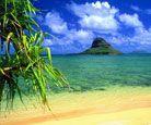 Beach Vacations!