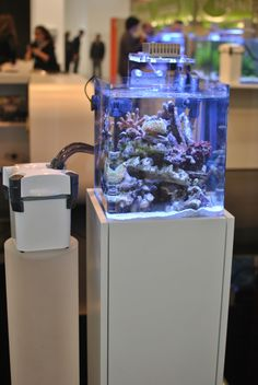 "SICCE External Canister Filter ""Whale"" @Interzoo 2014"
