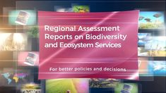 In March IPBES launched four Assessment Reports on and - one each for the and Sustainable Development, Environmental Issues, Non Profit, Assessment, How To Find Out, Spanish, English, Make It Yourself, Regional