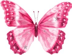 Welcome to butterfly animated gifs ! You will love these Butterfly pictures, Butterflies are a popular motif in the visual and . Butterfly Clip Art, Butterfly Pictures, Butterfly Wallpaper, Pink Butterfly, Monarch Butterfly, Dishcloth Knitting Patterns, Knit Dishcloth, Pink Love, Pretty In Pink