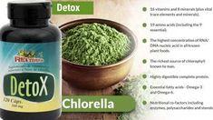chlorella para perder peso