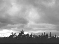Diane Again: November Rain