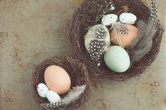 DIY Homemade Face Masks For Glowing Skin and Acne - Splash Colours Aries, Egg Face Mask, Face Mask For Spots, Maundy Thursday, Egg Nest, Easter Egg Dye, Deco Floral, Homemade Face Masks, Easter Table