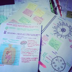 Visual note taking is personally so helpful.