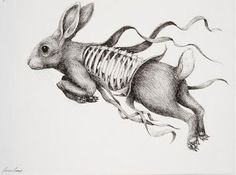 "Ericailcane, ""Hare"""