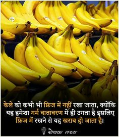 Amazing Things In Hindi Some Amazing Facts, Interesting Facts About World, Unbelievable Facts, Amazing Things, General Knowledge Book, Gernal Knowledge, Knowledge Quotes, Wow Facts, Real Facts
