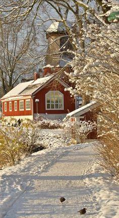 #WinterWonderland #Winter #Nature