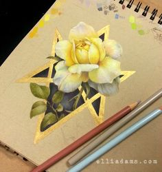 Working on this yellow rose drawing. Almost done. Colored pencil, marker and metallic gold ink.