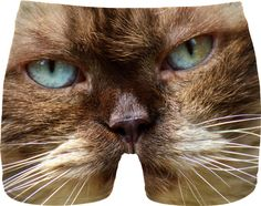 48623a959 Cat Face Men Underwear #erikakaisersot #RageOn #underwear #cats Face Men,  Cat