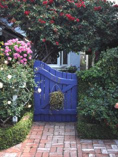 A side-yard gate painted vivid royal blue makes it stand out amid plants and flowers.