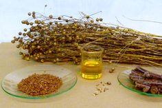 Olej lniany w kontekście pielęgnacji zdrowia Keeping Healthy, Natural Healing, Essential Fatty Acids, Omega 3, Linseed Flaxseed, Vitamin B17, Primrose Oil, Linseed Oil Benefits, Cancer Cure