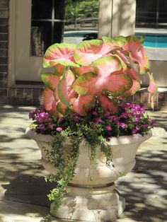 Shade Planter - Bring light and color to the darker areas of the garden
