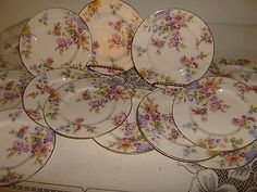 Castleton China Sunnybrooke (14) Bread And Butter Plates Free Shipping