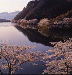 Niibo Dam, Niigata, Japan