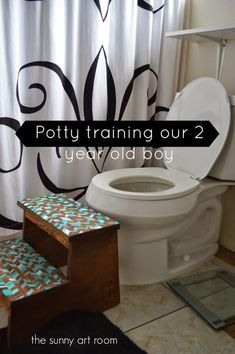 Potty training a two year old boy
