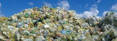Google Image Result for http://www.plasticoceans.net/wp-content/themes/WPUI/graphics/tempcontent/ssimage1.jpg